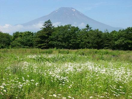 Kurafuji_20040619