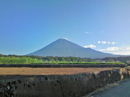 Fuji20080911