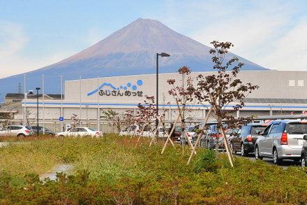 Fuji20081102_01