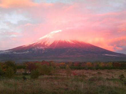 Fuji_20081112a