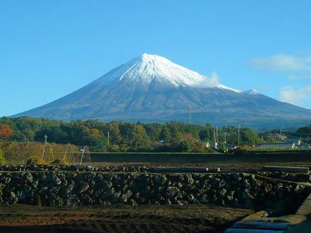 Fuji20081113