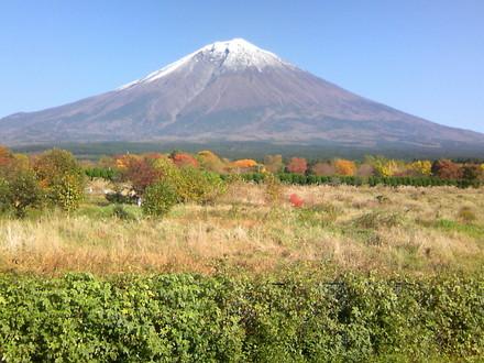 Fuji20081114a