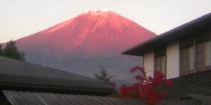 Fuji20081114b