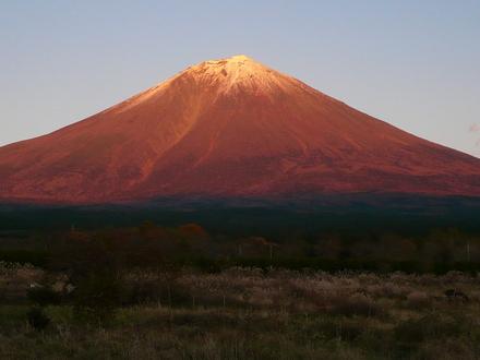 Fuji20081120