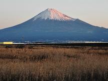Fuji20090101