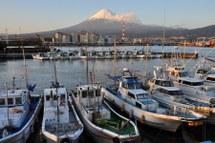 Fuji20090314_01