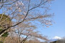 Iwamoto20090321_02
