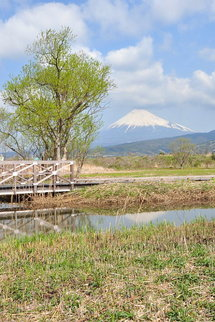 Ukishima01