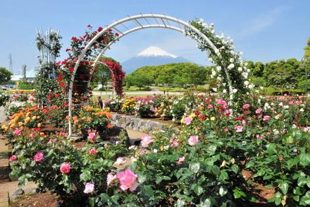 Fuji20090509_03