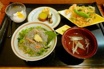 Shirasukaido02o