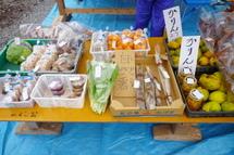 Kiwadaji05
