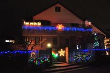 Fuji_illumi2009g