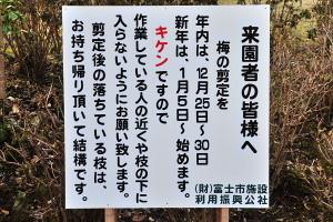 Iwamoto20091226g