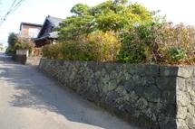 Fujipaku200912_02c