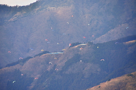 Paraglider01