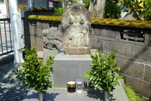 Fujipaku201004d