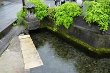 Fujipaku201006h