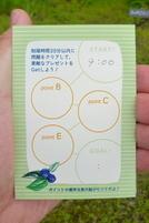 Chanoki201007e