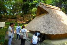 Fujipaku201007k