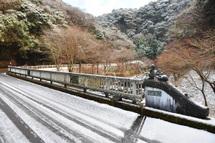 Snow20110110b
