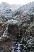 Snow20110110e