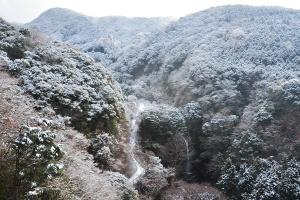 Snow20110110f