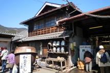 Fujinishiki05