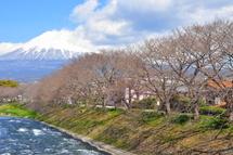 Ryugan20110326