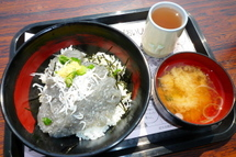 Tago_shirasu08