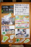 Ichinoichi201105a