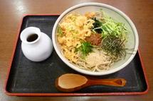 Tanukioyaji01