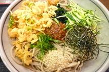 Tanukioyaji012