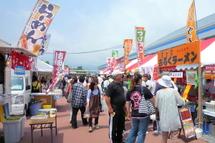 Fujinofumoto2011a