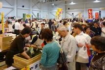 Fujinofumoto2011c