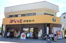 Tn_kasukabe03