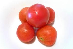 Tn_tomato02