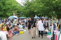 Fujistyle201106a