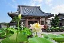 Daitsuji20110702b