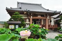 Daitsuji20110710b