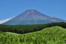 Fuji20110723b