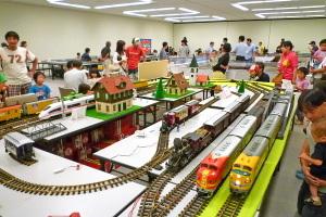 Trainfes2011b