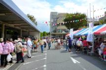 Kenkoufes2011a