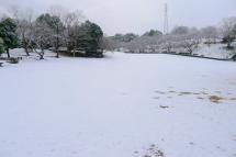 Snow20120117d