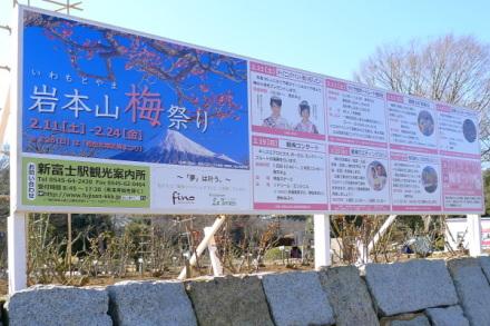 Iwamoto20120204f
