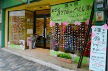 Miya_hina2012a