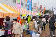 Fujinishiki2012e