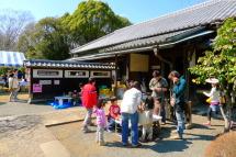 Haku_sakurafes2012b