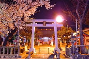 Tenjin_yozakura03