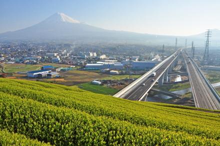 Shintomei01