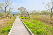 Ukishima201204b